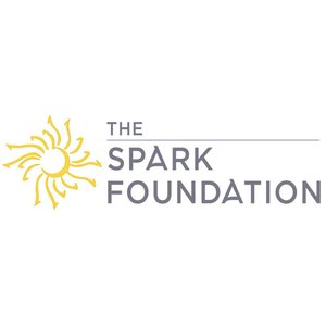 rise physical therapy spark foundation